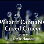 cancer, chemotherapy, cannabis, medical marijuana, RSHO